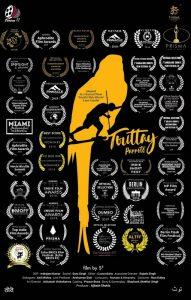 Touttey (Parrots)